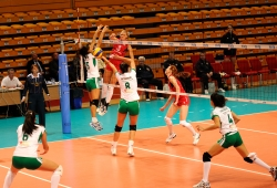 DA_12082009_400_Volley_Url-Ptkos